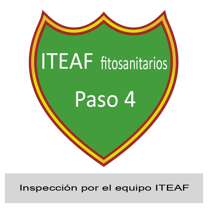 Paso 4: inspección por el equipo ITEAF de Inlocal
