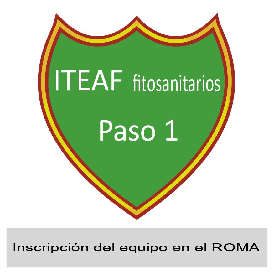 Paso 1: inscribir el equipo en el ROMA