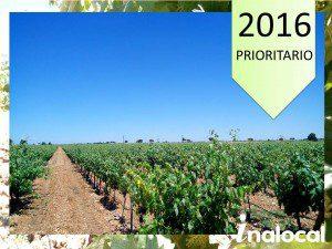 ITEAT Inspecciones tecnicas equipos aplicar productos fitosanitarios Madrid Castilla La Mancha Andalucia Extremadura