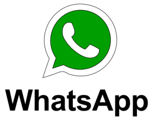 logo WHATSAPP ina