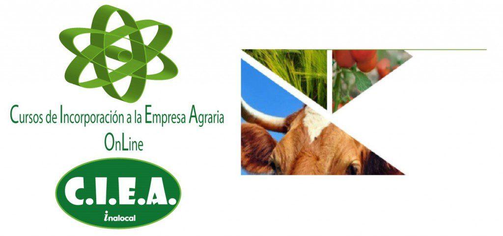 Requisitos del joven agricultor