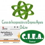 Incorporación jóvenes en Castilla y León