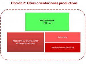 Incorporacion-otras-orientaciones